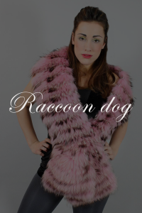 Raccoon dog fur